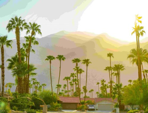 Palm Springs Window Replacement